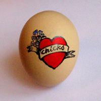 chicks200
